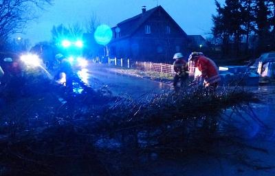 Bäume drohten auf Straße zu fallen