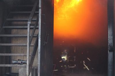 Feuer aus einer anderen Perspektive